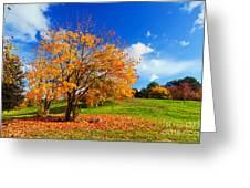 Autumn Fall Landscape Greeting Card