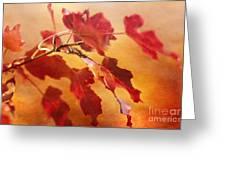 Red Blaze Greeting Card