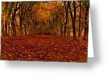 Autumn II Greeting Card