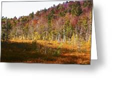 Autumn In The Adirondacks Greeting Card