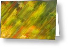 Autumn Leaves On The Abstract Background Greeting Card