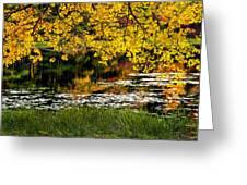 Autumn Pond 2013 Greeting Card