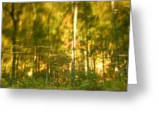 Autumn Reflections In Tennessee Greeting Card