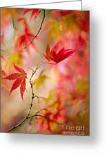 Autumn Reverie Greeting Card