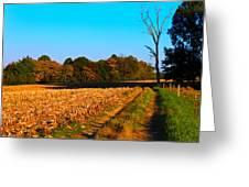 Autumn Road Greeting Card