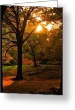 Autumn Sunset Greeting Card