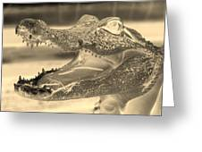 Baby Gator Neg Dark Sepia Greeting Card