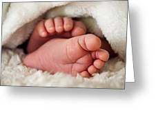 Baby Toes Greeting Card