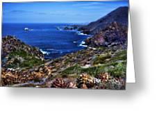 Baja Coast Greeting Card