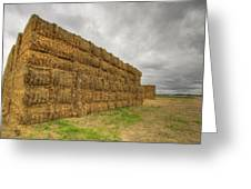 Bales Of Hay On Farmland 4 Greeting Card