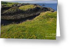 Ballintoy Harbor Greeting Card