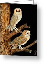 Barn Owl Duo Greeting Card