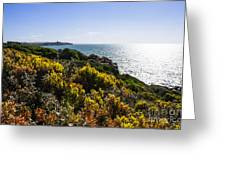 Bass Strait Ocean Landscape In Tasmania Greeting Card