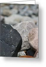 Beach Fossil Greeting Card
