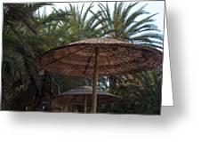 Beautiful Beach With Palm Trees Greeting Card