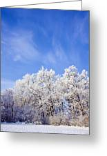 Beautiful Winter Landscape Greeting Card