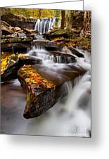 Below Oneida Falls Greeting Card