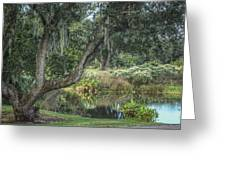 Beside The Pond Greeting Card