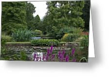 Beth Chatto Gardens Greeting Card