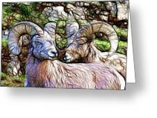 Bighorns Greeting Card