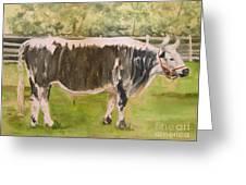 Bill's Bull Greeting Card