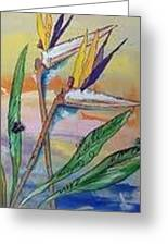 Bird Of Paradise Greeting Card by Karen Carnow