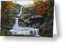 Black Bear Falls Greeting Card by Crista Forest