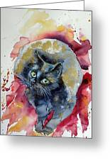 Black Cat In Gold Greeting Card