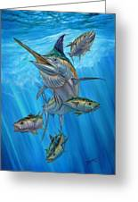 Black Marlin And Albacore Greeting Card