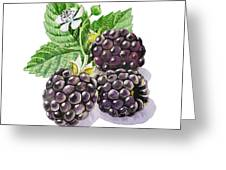Artz Vitamins Series The Blackberries Greeting Card