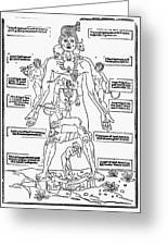 Bloodletting Chart, 1493 Greeting Card