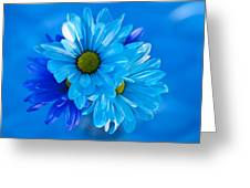Blue Daisies In Vase Outdoors Greeting Card