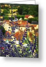Blue Flowers And Rooftops In Sarlat Greeting Card