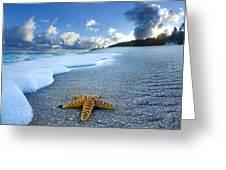 Blue Foam Starfish Greeting Card