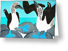 Blue Footed Boobies. Greeting Card