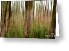 Blurred Trees Greeting Card