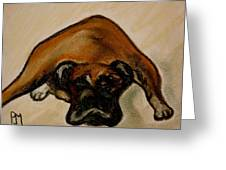 Boxer Down Greeting Card