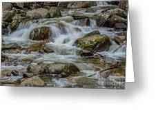 Bridalveil Creek Yosemite Greeting Card