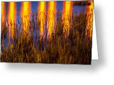 Bridge Of Lions Reflections St Augustine Florida Painted    Greeting Card