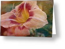 Briefly Beautiful Greeting Card