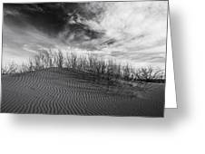 Bruneau Dunes State Park Idaho Greeting Card