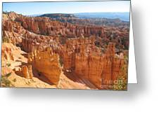 Bryce Canyon Hoodoos And Fins Greeting Card