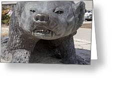 Badger Statue 4 At Uw Madison Greeting Card