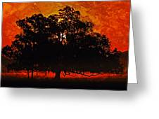 Burning Tree Greeting Card