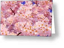 Bursting With Blossoms Greeting Card