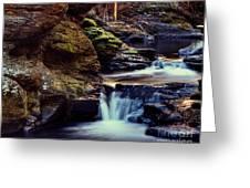 Bushkill Falls Greeting Card