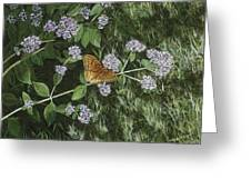 Butterfly On Oregano Greeting Card