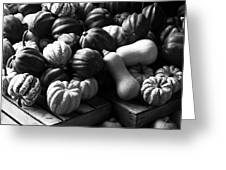 Bw Farm Market Acorn Butternut And Carnival Squash Michigan Usa Greeting Card