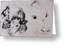 Calves, Gt Garnetts II Pen & Ink On Paper Greeting Card