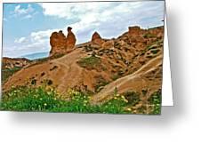 Camel In Camel Valley In Cappadocia-turkey Greeting Card